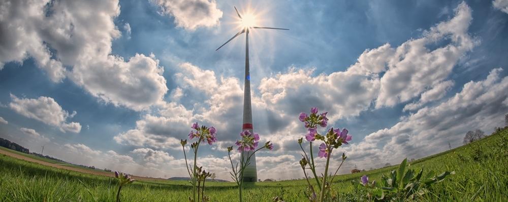 wind-turbine-in-field-with-flowers